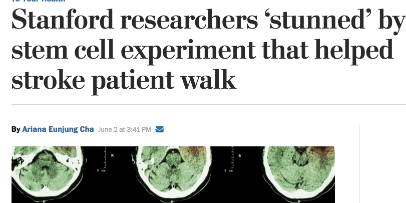 Newspaper articles on stem cell research